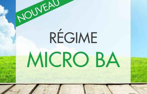 Micro BA