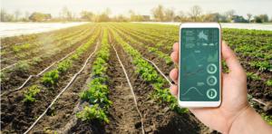 exploitation agricole gestion